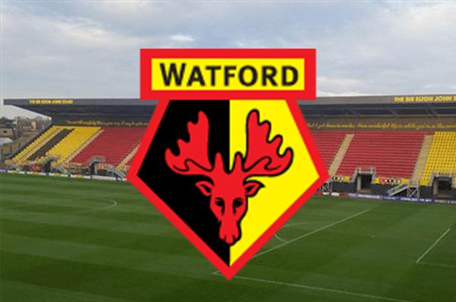 watford news now